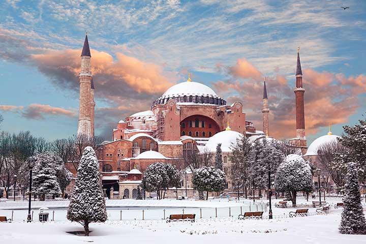 Not As Crowded Winter Turkey