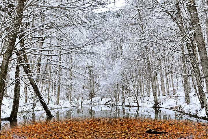 Seven Lakes Winter