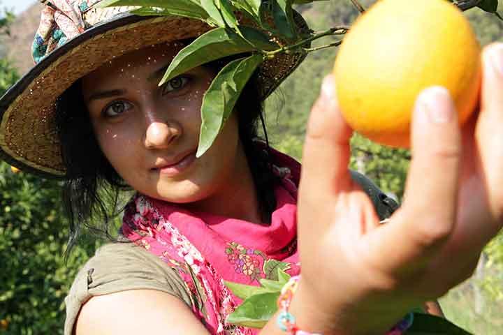 Organic Farms on Eco Tours in Turkey
