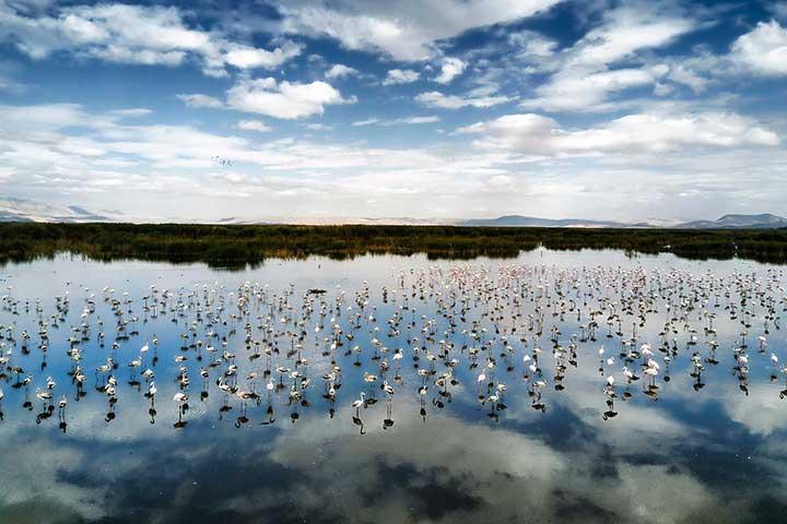 Most Amazing Eber Lake
