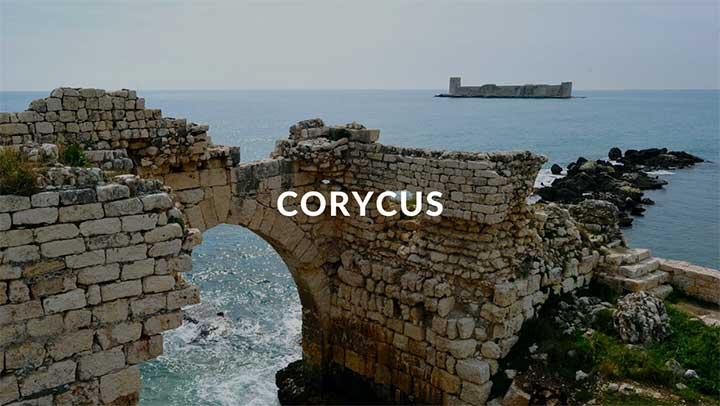 Corycus